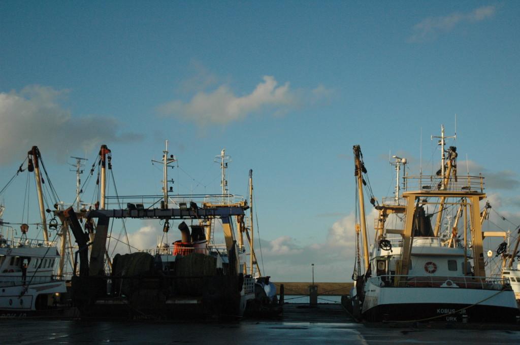 harlingenbootjes