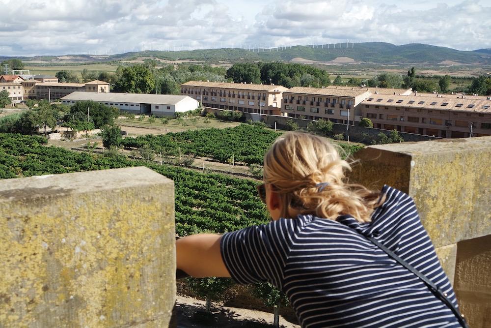 Sabine wijn Navarra