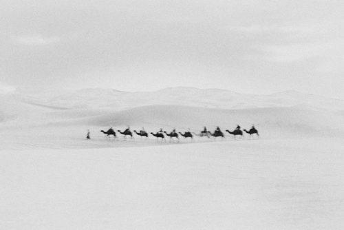Caravan in Sahara by Bastiaan Woudt