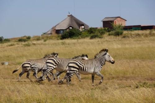 kroonstad-zuid-afrika