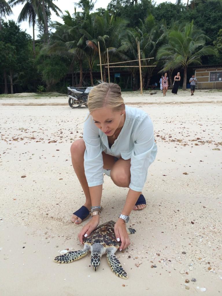 zeeschildpad-thailand