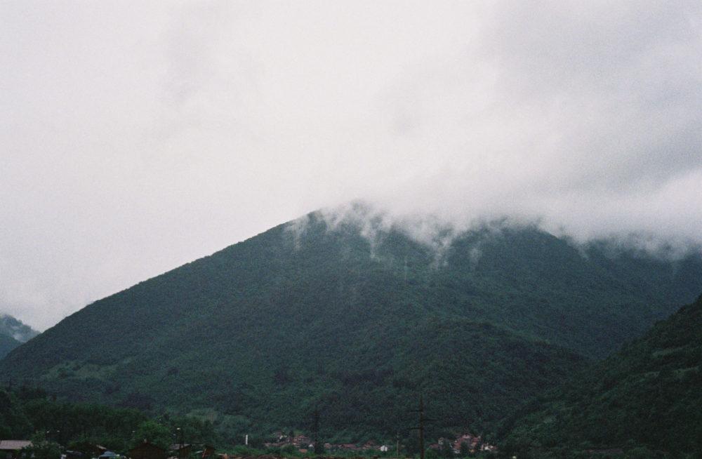 Bergen in bosnie en herzegovina Iris