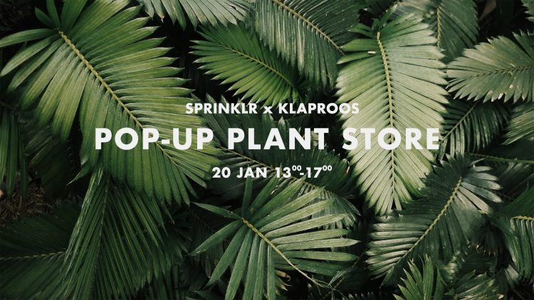 pop-up plant store sprinklr klaproos