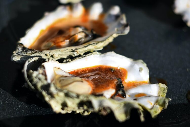 oysters-nicole-elliot-oesters