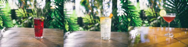 hooghoudt-genever-cocktails